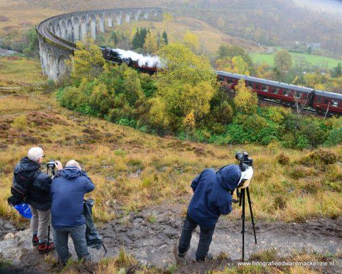 Fotocursus fotoreis Schotland